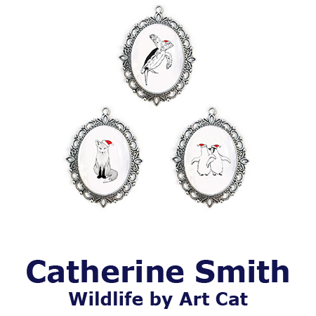 Illustrator | Catherine Smith