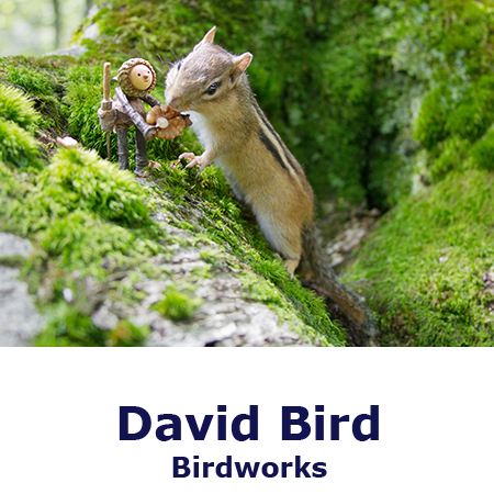 Photographer | David Bird